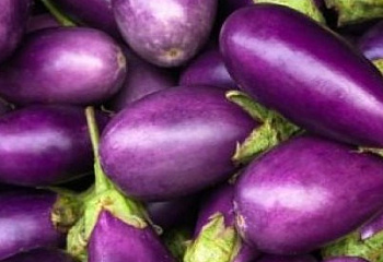 Баклажан Eggplant Thai Round Purple F1
