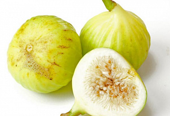 Инжир Dominicos White Italian Fig